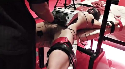 Japanese bdsm, Electric, Pet