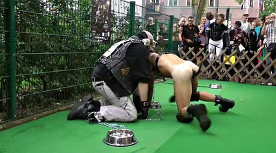 Submission, Gay slave, Dog slave, Dog sex, Slaves, Slave dog