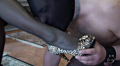 Whipping, Whip, Femdom whipping, Whipping femdom, Femdom whip, Cock whipping