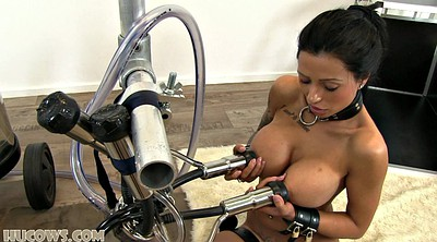 Sex slave, Tits milking, Milking machine, Big milk, Bdsm machine