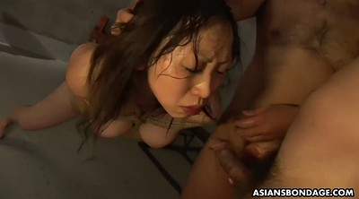 Tied up japanese, Japanese bdsm, Asian bondage, Asian bdsm, Sperm swallow, Japanese face fuck