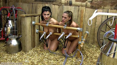 Bdsm, Milking