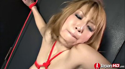 Japanese bdsm, Japanese bondage, Amazon