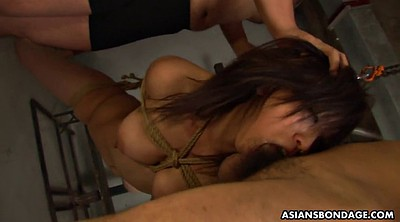 Tied, Rope, Tie, Asian big cock, Asian babe, Roped