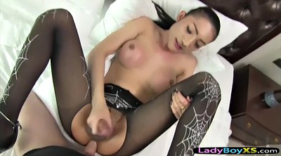 Ladyboy, Shemale in pantyhose