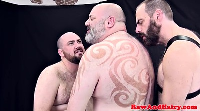 Mature anal, Bear, Bears, Chubby bear