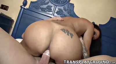 Tranny, Tranny blowjob, Tranny beautiful