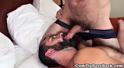 Bears, Bear gay, Muscle bear, Bareback gay, Mature gay, Bears gay