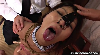 Japanese bdsm, Aoi