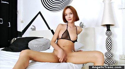 Asian solo, Shemales