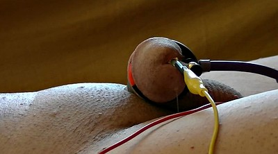 Prostate, Cut, Electro, Tail