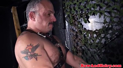 Bears, Hairy bear, Big bear, Bear bondage