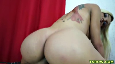 Shemale, Shemale creampie, Ts anal