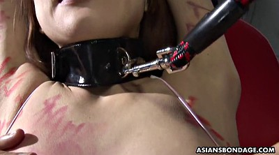 Asian bdsm, Drip, Wet panty, Dripping wet, Asian hardcore