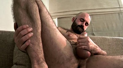 Bear, Gay hairy