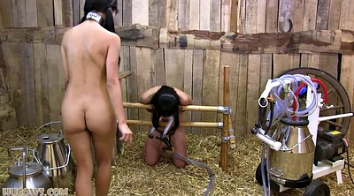 Japanese bdsm, Milking, Asian milk