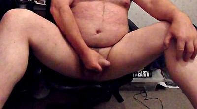 Bear, Bears, Web cams, Web cam