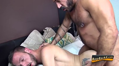 Bear gay, Gay bear, Licking ass, Bears