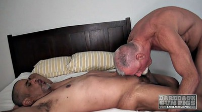Mature gay, Daddies gay