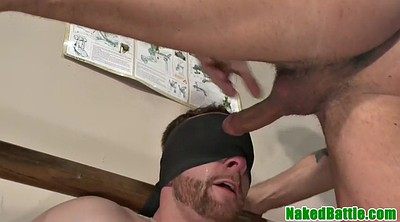 Wrestling, Cat, Blindfolded, Blindfold