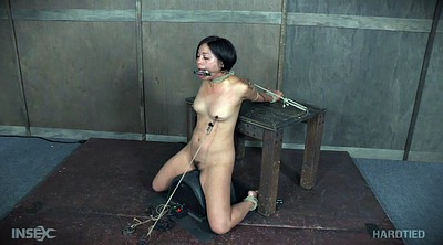 Tied, Tied up, Asian tied, Tie, Asian bondage