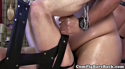 Bear, Leather, Breeding, Leather fetish, Breeding gangbang