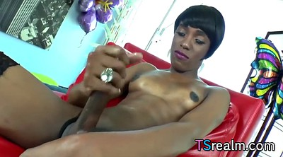 Shemale solo, Black shemale, Small tits tranny, Shemale cumshot