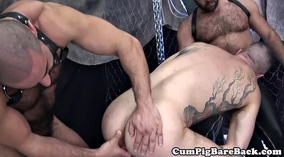 Swing, Mature ass, Leather, Group mature, Bear gay, Rimming threesome