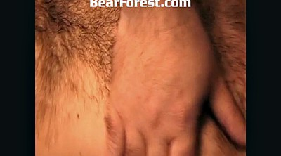 Daddy bears, Father, Boot, Bears, Forest, Daddy old