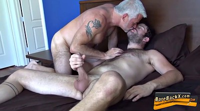 Bears, Mature gay