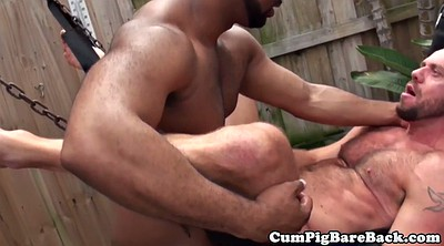 Bear, Interracial anal