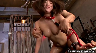 Japanese anal, Asian anal, Japanese bdsm, Bukkake, Japanese bukkake, Asian double