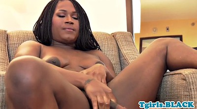 Black trans, Strips, Trans solo, Solo shemale, Shemale and shemale, Amateur trans