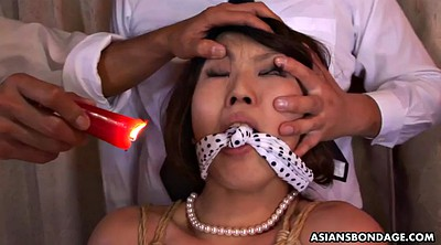 Brutal, Japanese bdsm, Japanese gay, Aoi, Torment, Small asian