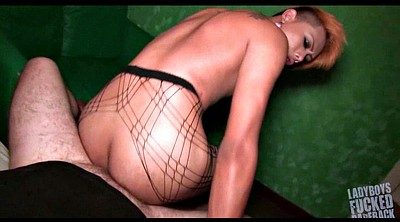 Pantyhose gay, Thai, Shemale pantyhose, Pantyhose shemale, Thai anal, Small shemale