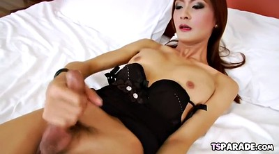 Shemale, Asian shemale solo, Tgirls, Tgirl, Shemale big tits
