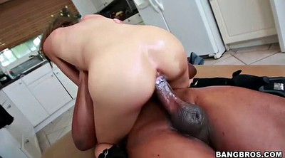 Swallow, Huge white cock