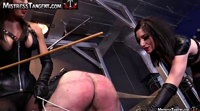 Caning, Male, Femdom spanking, Caned
