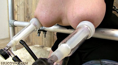 Tied up, Tie, Milk tits, Milking tits, Black bbw anal, Milk anal