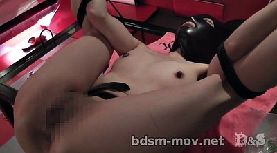 Japanese bdsm, Needle, Needles, Labia
