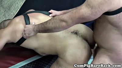 Bear, Mature creampie, Bear gay