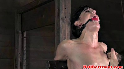 Hogtied, Anal bdsm, Anal training, Anal train