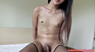 Asian anal, Cumshot, Fishnet, Shemale asian, Shemale anal, Asian blowjobs