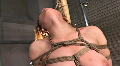 Japanese bondage, Nipple fucking, Nipple fuck, Japanese nipple