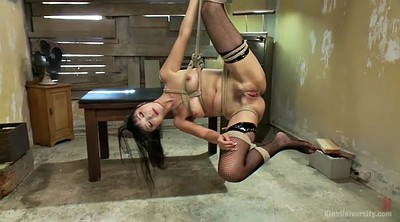 Japanese bdsm, Marica hase, Japanese bondage, Hairy fuck, Brunettes, Asian bondage