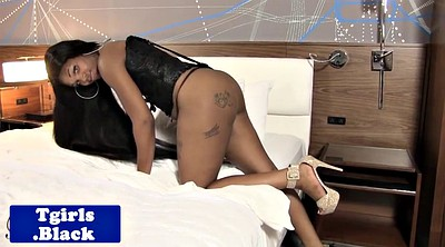 Black shemale, Black tranny, Tranny cock