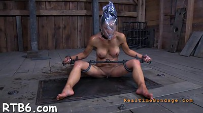 Squirt, Torture, Shitting