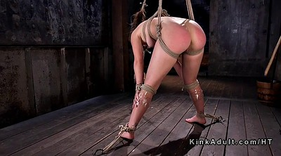 Caning, Hogtied, Spank ass, Ass slave, Caned