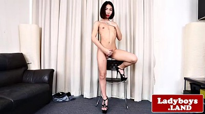 Ladyboy, Asian shemale