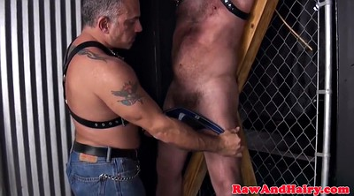 Bear, Bears, Bondage gay, Bbw big ass